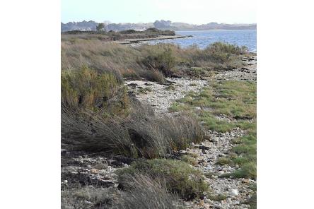 La Petite Mer de Gâvres - Séjour en chambres d'hôtes Bretagne Sud - Les Jardins du Cloestro - Kervignac