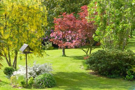 Dormir en chambres d'hôtes Bretagne Sud - Les Jardins du Cloestro Grand parc